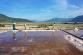 Asian farmer, salt plantation, Vietnamese salina — Stock Photo