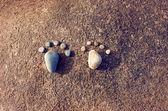 Idea concept, pebble, foot step — Stok fotoğraf