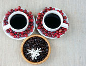 Harmony creative, coffee bean, cup of cafe,  ripe berries — Стоковое фото