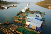 Asian residence, Vietnam floating house — Stock Photo
