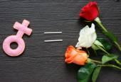 Feminine symbol, women,  red rose — Stock Photo