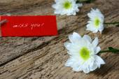 Love background, love you, miss you — Stock Photo
