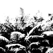 Silhouette of fern — Stock vektor
