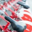 Постер, плакат: Red bicycles parked in a row