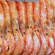 Display frozen prawns for sale at a market, La Boqueria Market, Barcelona, Catalonia, Spain — Stock Photo #67394115