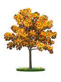 Realistic autumn tree and grass — Stockvektor