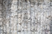 Plaster Wall Texture — Stock Photo