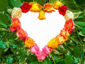 Heart symbol of colorful roses — Stock Photo