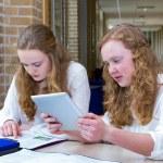 Two dutch teenage girls studying in long school corridor — Stock Photo #76620043