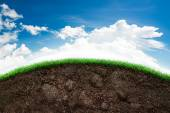 Soil and grass in blue sky — Stock Photo