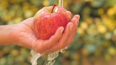 Red apple in hand under flowing water slow motion — Stock Video