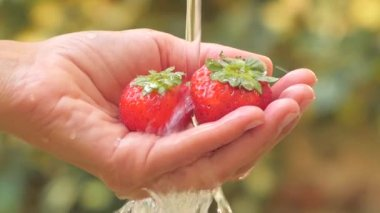 Strawberry in hand under flowing water slow motion — Stock Video