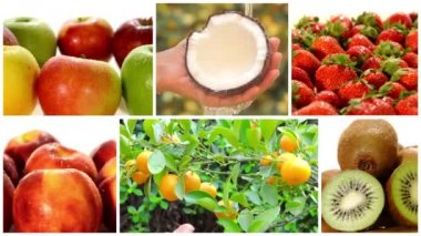 Montage including diverse fruits and fruit trees — Stock Video