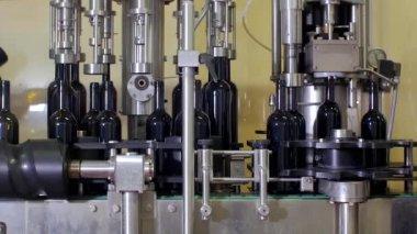 Bottling lines and wine bottling equipment — Stock Video