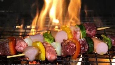 Grilling meat skewers — Stock Video