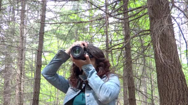Young woman wildlife photographer in action — Vídeo de stock