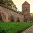 Постер, плакат: Defensive wall Torun Poland in the sunrise