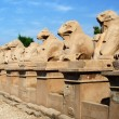 Avenue of sphinxes in Precinct of Amun-Re  (Karnak Temple Complex, Luxor, Egypt) — Stock Photo #65706463