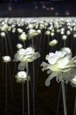 LED flower garden — Stockfoto