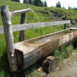 Old wooden trough — Stock Photo #60619749