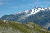 Meadow and peaks nearby Chamonix in Alps in France — Fotografia Stock