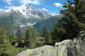 Rock, trees and peaks nearby Chamonix in Alps in France — Stock Photo