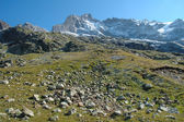 Stones on meadow and peaks nearby Grindelwald in Switzerland — Stock Photo