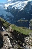 Glacier and trail nearby Grindelwald in Switzerland — Stock Photo