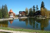 Pond in Szklarska Poreba in Poland — Stock Photo