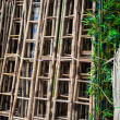 Bamboo Ladders — Stock Photo #71928701