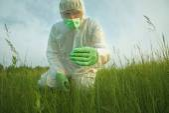 Scientist man examining plants — Stock Photo