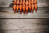 Red boiled shrimps — Stock Photo