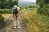Hiker man walking on path in summer — Stock Photo