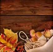 Foglie gialle d'autunnali — Foto Stock