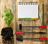 Frame with garden tools — Stock Photo