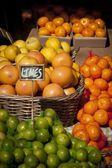 Oranges, Lemons and Limes — Stock Photo