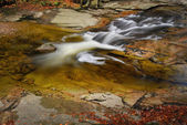 River cascade in mountain forrest — Foto Stock