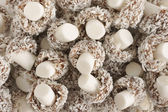 Coconut Mushrooms — Stock Photo