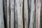 Piles of dry wood — Stock Photo