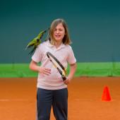 Tennis school and nandayus nenday — Stock Photo