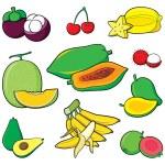 Fruits Set — Stock Vector #60106779