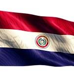Paraguay National Flag — Stock Photo #51878483