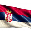 Serbia National Flag — Stock Photo #51878581