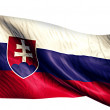Slovakia National Flag — Stock Photo #51878595