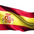 Spain National Flag — Stock Photo #51878621