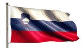 Slovenia National Flag — Stock Photo