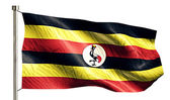 Uganda National Flag — Stock Photo
