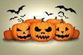 Halloween Pumpkins Bats White Background — Stock Photo