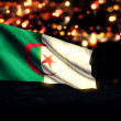 Algeria National Flag City Light Night Bokeh Background 3D — Стоковое фото #59326067