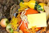 Autumn greeting card — Stock Photo